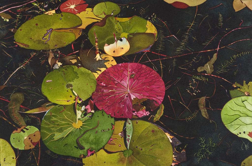 Angelis Jackowski - Waterlily III