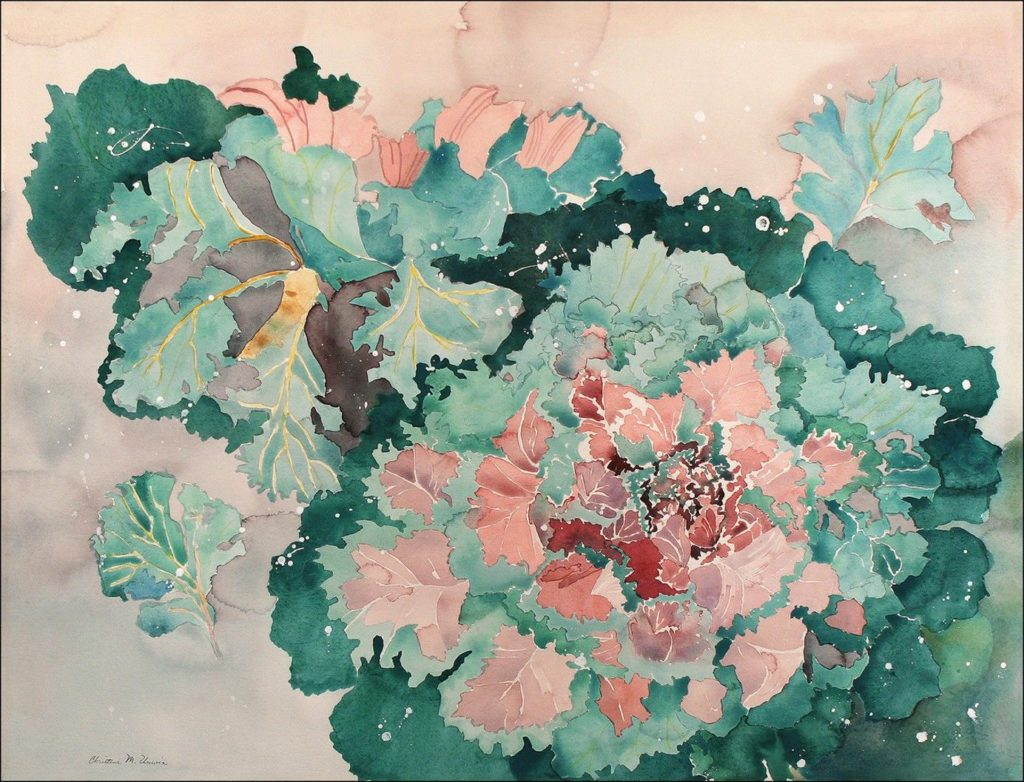 Chris Unwin - Ornamental Cabbage